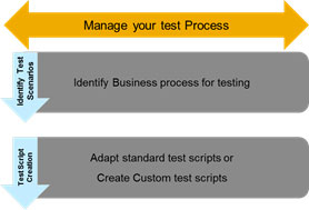 manage your test process